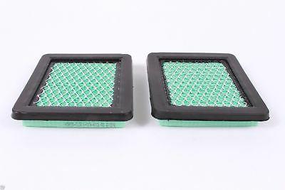 2 17211-ZL8-023 Air Filter